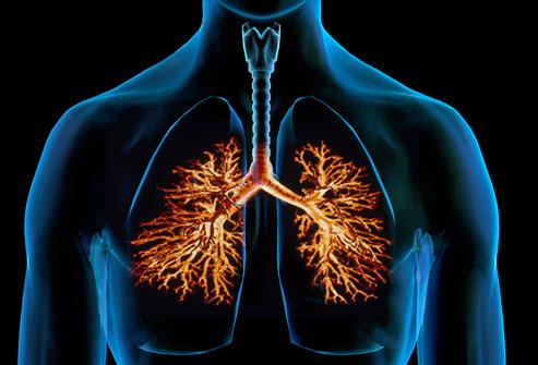 ayurvedic treatment for bronchitis